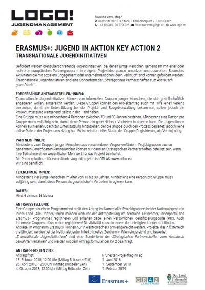 Vorschaubild Infoblatt Transnationale Jugendinitiative