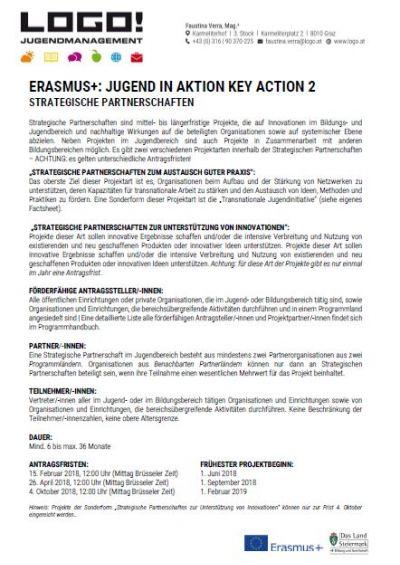 Vorschaubild Infoblatt Strategische Partnerschaften