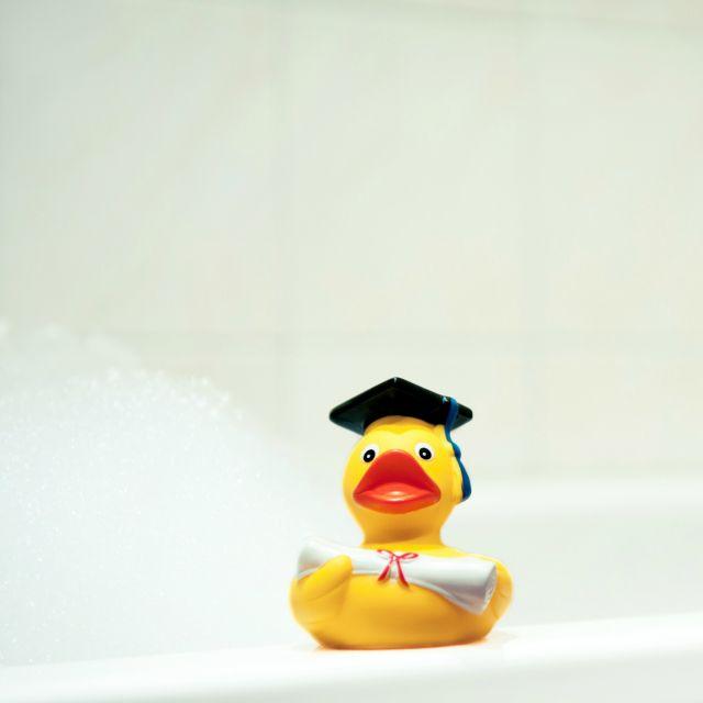 Badeente mit Diplom und Doktorhut