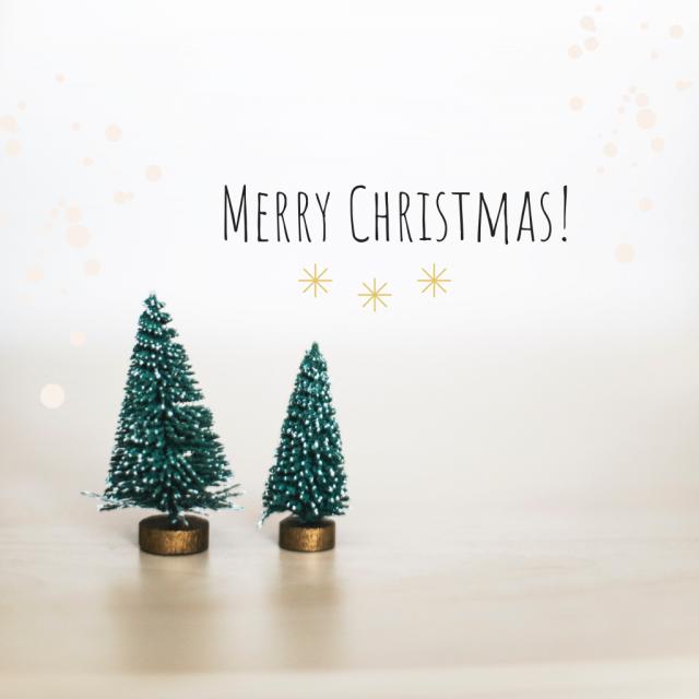 Bild von zwei Tannen in Kerzenhaltern und Merry Christmas Schriftzug