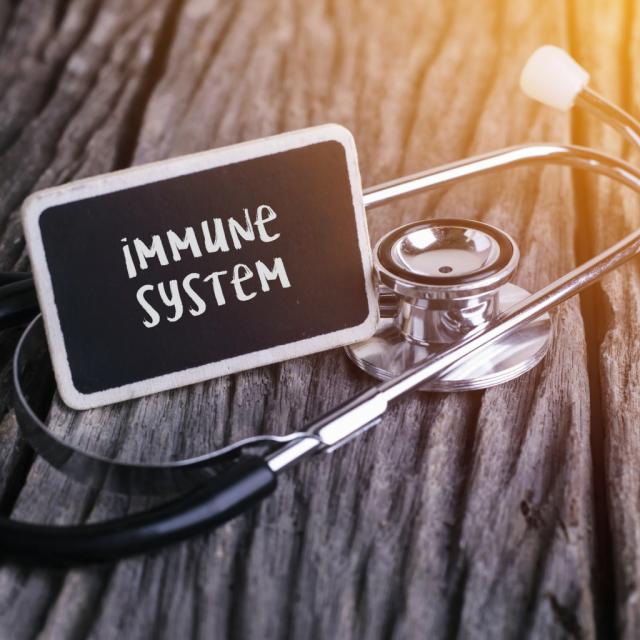 Stetoskop und Tafel mit Schriftzug Immune System