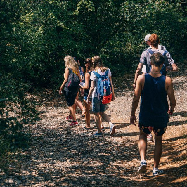 Jugendliche, Wald, Projekt