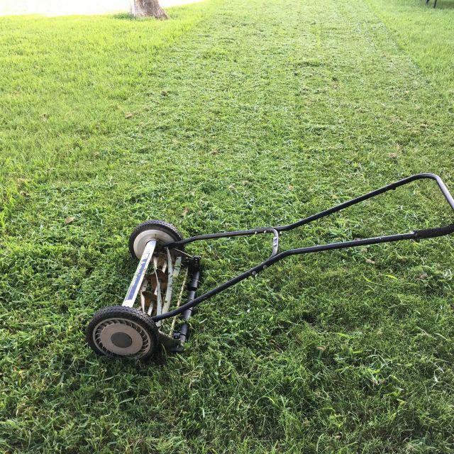 grüner Rasen mit altem Handrasenmäher