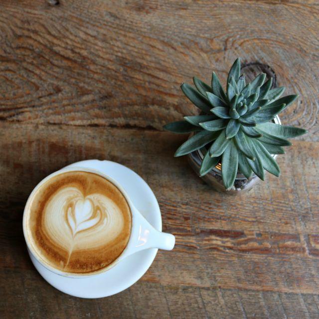 Tasse Kaffee, Planze